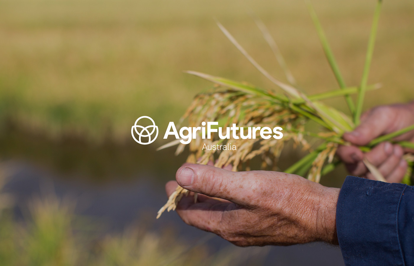 AgriFutures Brand Development